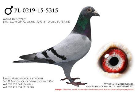 PL-0219-15-5315
