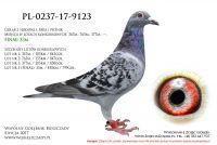 PL-0237-17-9123