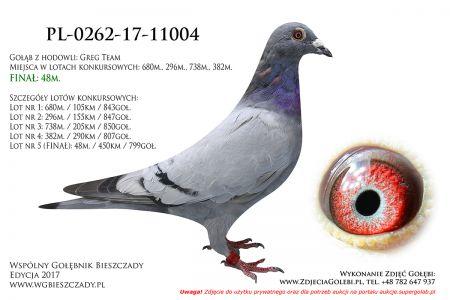 PL-0262-17-11004