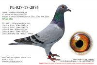 PL-027-17-2874
