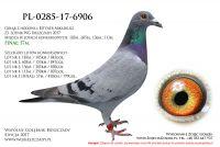 PL-0285-17-6906