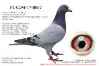 PL-0294-17-8067