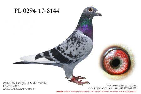 PL-0294-17-8144