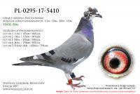PL-0295-17-5410