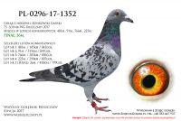 PL-0296-17-1352