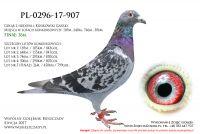 PL-0296-17-907