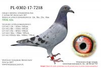 PL-0302-17-7218