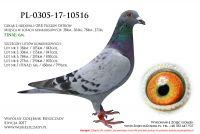 PL-0305-17-10516