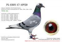 PL-0305-17-1092