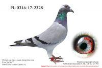 PL-0316-17-2328