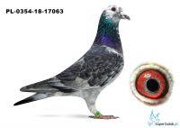 PL-0349-18-17063