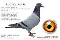 PL-0360-17-6451