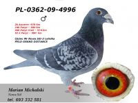 PL-0362-09-4996 - dalekodystansowy