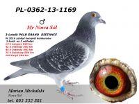 PL-0362-13-1169 - dalekodystansowy