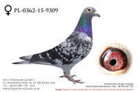 PL-0362-15-9309 - likwidacja hodowli