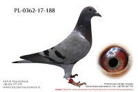 PL-0362-17-17-188