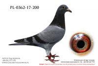 PL-0362-17-200