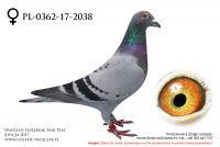 PL-0362-17-2038
