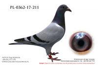 PL_0362-17-211