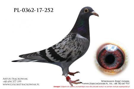 PL-0362-17-252