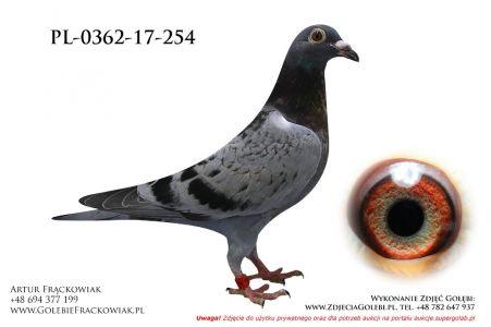 PL-0362-17-254