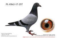 PL-0362-17-257