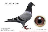 PL-0362-17-259