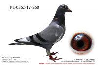 PL-0362-17-260