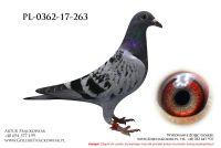 PL-0362-17-263