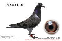 PL-0362-17-267