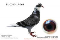 PL-0362-17-268