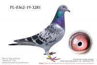PL-0362-19-3281