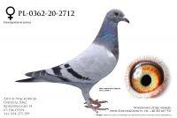 PL-0362-20-2712 - linia Van Loon