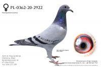 PL-0362-20-2922 - linia Bliksema