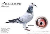 PL-0362-20-2928 - z linia Super Dohmen