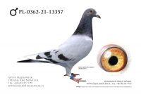 PL-0362-21-13357 - Linia AD (złoto olimpijskie Nitra)