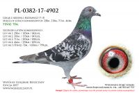PL-0382-17-4902
