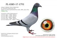 PL-0385-17-1793