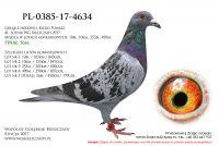 PL-0385-17-4634