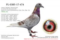 PL-0385-17-474