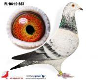 PL-04-19-867