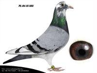 PL-04-19-888