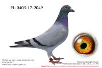 PL-0403-17-2049