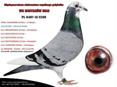 PL-0407-18-9390