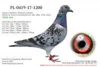 PL-0419-17-1200