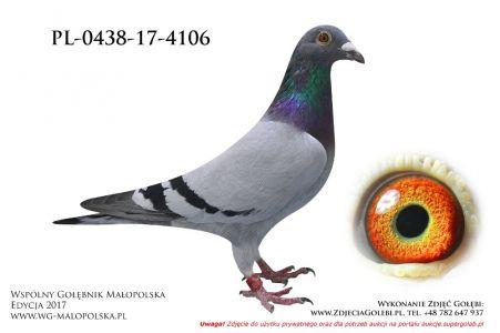 PL-0438-17-4106