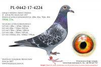 PL-0442-17-4224