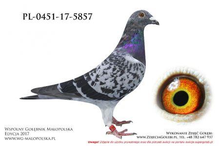 PL-0451-17-5857