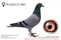 PL-0452-17-3041