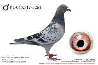 PL-0452-17-5261